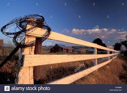NA, USA, Washington, Near Walla Walla, Fence, Coiled Barbed Wire ... Red Barn Washington Landscape Pictures Pinterest Barns Original Boeing Airplane Company Building Museum The The Manufacturing Plant Exterior Of A Red Barn In Palouse Farmland Spring Uniontown Ewan Area Usa Stock Photo Royalty And White Fence State Seattle Flight Interior Hip Roof Rural Pasture Land White Fence On Olympic Pensinula