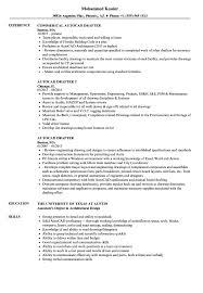 Download Autocad Drafter Resume Sample As Image File