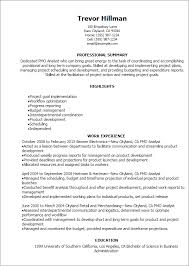 Professional Pmo Analyst Resume Templates To Showcase Your Talent
