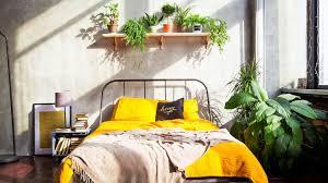 pflanzen im schlafzimmer darauf solltest du achten