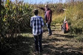 Pumpkin Patch Near Rochester Mn by Photos Corn Maze At Willows Keep Farm Near Zumbrota Local News