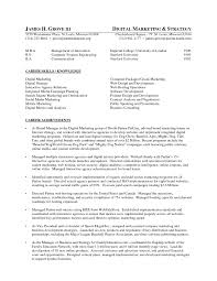 Sample Executive Resume 3 Digital Marketing Example Essaymafia