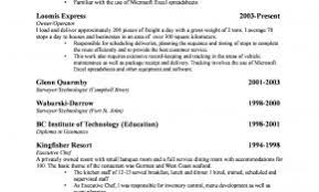 Sample Resume For Small Retail Business Owner Unique Latest Print Ideas