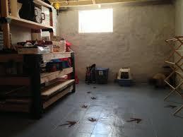 Covering Asbestos Floor Tiles Basement by Basement Floor Gneiss House