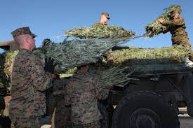 Christmas Tree Recycling East County San Diego by Operation Christmas Trees For Troops Delivers Holiday Cheer To
