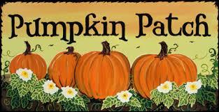 Pumpkin Patch Naples Fl by Lehigh Acres Pumpkin Patch Wink News