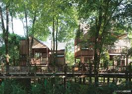 100 Tree House Studio Wood 4 Small Units In Tranquil Tropical Living
