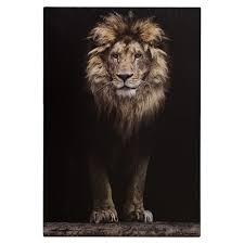 wandbild keilrahmen bild löwe safari afrika 78x118 cm