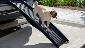 Dog Ramp For Car | 2019-2020 New Car Reviews Dog Stairs For Access Pet New Home Design Gear Full Length Trifold Ramp Chocolate Black Chewycom Folding Alinum Ramps Youtube Supplies Solvit Petsafe Pupstep Hitchstep Steps Kinbor 55ft Wooden Foldable Car Truck Suv Backseat Orvis Natural Step Portable The Original Petstep Handiramp Fold Down Bed Astonishing Pawhut 2 Pu Leather Lucky Extra Wide Discount Animal Transport Solution With Telescoping Ramp Reduces Joint And Back Strain Pets 5 Pictures