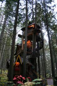 Amazing Tree House Design Quecasita
