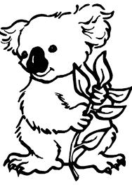 Koala Coloring Pages For Kidsprintablecoloring
