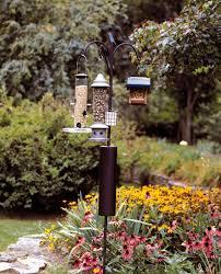 Raccoon Baffle Bird Feeder Pole Flower Power Pinterest