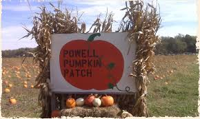 Schaake Pumpkin Patch by Pictures Kansas Maze At Gaeddert Farms Pumpkin Patch Buhler Ks