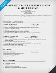 41 Printable Inside Sales Representative Resume Example