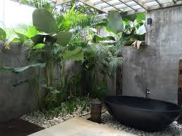 Plants In Bathrooms Ideas by Best 25 Tropical Bathroom Ideas On Pinterest Tropical Bathroom