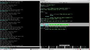 Python3 Programing Zero To Sixty