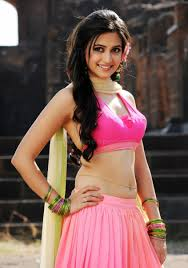 Profile of Actress Kriti Kharbanda Telugu movie data base of
