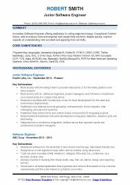 IT Resume Samples Examples And Tips