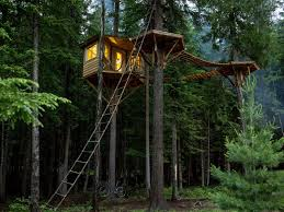Ethan Schussler Built His First Tree House At 12 Years Old Today In