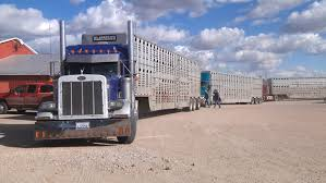 100 Hanson Trucking Firms Worried Electronic Logging Device Could Hurt