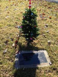 A Christmas Tree On Babys Grave And Beautiful Day