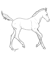 Printable Realistic Foal Coloring Pages Wild Horse S From Breeding By Khustle On Deviantart