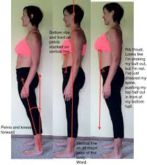 61 best pelvic floor exercises images on pinterest pelvic floor