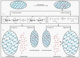 100 Ph Of 1 Polymers Free FullText PH Sensitive Hydrogels In Drug Delivery