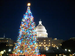 Tannenbaum Christmas Tree Farm Michigan by Did You Know These Christmas Tree Facts Days Gone By