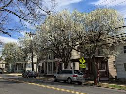 N.J.'s 25 Best Small Towns, Ranked, For The Ultimate Fall Day Trip ... 15 Food And Wine Fesivals In New Jersey This Fall Red Barn Cellos Corner Celebrate Female Friendship Year With Galentines Day Red Barn Cafs Crazy Gas Bill For 59257 Sends Owner Evelyn Njs 10 Best Pie Shstops For National Pie Njcom 130 Images On Pinterest Girl Jersey Top Adultthemed Tricks Treats Halloween At The Rosedale Blueberry Farm Home Facebook 159 Coffee Shop Cafe Restaurant Cafes Hammton Fire Destroys Fruitstorage Warehouse Breaking News Hunting The Very Best