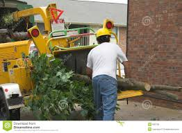 100 Truck Rental Lowes Tree Chipper Machine Price S Accessories