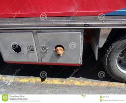 Dog Peeking Out Of A Truck Storage Hold Stock Image - Image Of Truck ... Free Truck Rental From Storage West 2017 Ram 1500 Cargo Space And Review Car Driver F150 Super Duty Tuff Bed Bag Black Ttbblk Plastic Tool Box Best 3 Options Lockaway Airport 907 N Coker Loop San Antonio Tx Amazoncom Duha 70200 Humpstor Unittool Boxgun High Quality Luggage Hooks Haing Organizer Diy Part Poting Dog A Clever Truckbed System Tools Of The Trade Fleets Trinity Boxes Equipment Accsories The How To Install Decked Youtube