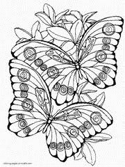 Two Cute Butterflies Printable Coloring Page