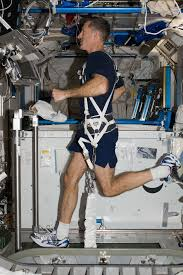 Astronaut Dan Burbank Runs On The T2 Treadmill With Aid Of Glenn Harness Aboard