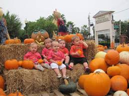 Gainesville Pumpkin Patch by Pumpkins And Fun Are As Close As First United Methodist Church Of