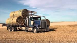 Selfloading Round Bale Truck 1 - YouTube Kims County Line In Its Hday Small Hay Truck Stock Image Image Of Biological Agriculture 14280973 Truck Hauling On Farm With Family Help Men Riding Trailer Full With Bales Of Hay Straw Free Stock Photo Public Domain Pictures Hauling Bmt Members Gallery Click Here To View Our Members A Large Central Washington State Delivers Winter Crownline Beds Farm Source Sales Old Rusting Vintage Full Pumpkins And 2009 Dodge Feed Hydraulic Spike T S Feeder