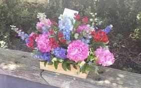News Scent Floral Boutique NZ