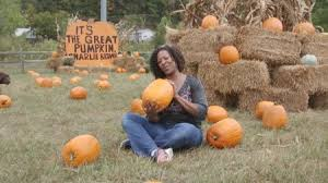 Southern Ohio Pumpkin Patches by Pumpkin Patch Axs