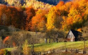 Fall, Barns, Nature, Forest, Grass, Hill, Landscape, Trees ... Xlentcrap Barns Flowers Stuff 2009 In Vermont The Fall Stock Photo Royalty Free Image A New England Barn Fall Foliage Sigh Farms And Fecyrmbarnactorewmailpouchfallfoliagetrees Is A Perfect Time For Drive To See National Barn Five Converted Rent This Itll Make You See Red Or Not Warming Could Dull Tree Dairy Cows Grazing Pasture With Dairy Barns Michigan Churches Mills Covered Mike Of Nipmoose Engagement Beauty Pa Leela Fish Rustic Winter Scene Themes Summer Houses Decorations