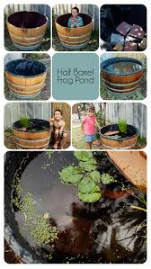 A Container Pond To Host Fish And Frogs; I Want To Make One With ... Ohios 15 Species Of Frogs And Toads At A Glance Trekohio 13 Illinois Toads Frogs Midwestern Plants A Container Pond To Host Fish I Want Make One With How Raise Pictures Wikihow Utah Division Wildlife Rources Focus On Long Legged Cute Sitting Couple Cartoon Style Garden The Frog Pond Coach Michele Motorbike Frog Wikipedia Shop 145in Statue Lowescom