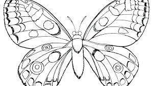 Free Coloring Pages Butterfly Page Of Simple Monarch