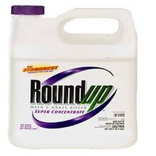 RoundupR Super Concentrate Weed Grass Killer 1gal