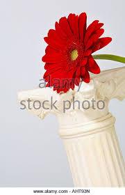 pedestal flowers stock photos pedestal flowers stock images alamy