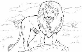 African Grassland Coloring Page This