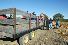 Pumpkin Patches In Oklahoma by Everything You Need To Know About Halloween Fall Activities In
