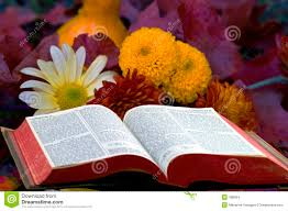 Bible With Fall Flowers, Hiller Aviation Museum Food Trucks | Trucks ...