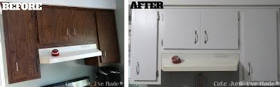 Project Ideas Painting Laminate Cabinets Before And After Paint