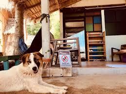 100 Ozone House Hostel Ko Lanta Thailand Bookingcom