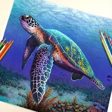 Colored Pencil Art 17