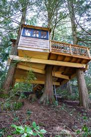 100 Tree House Studio Wood 66 84 145 5554 House Designs Cool Tree